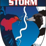 Southern Storm Football Club