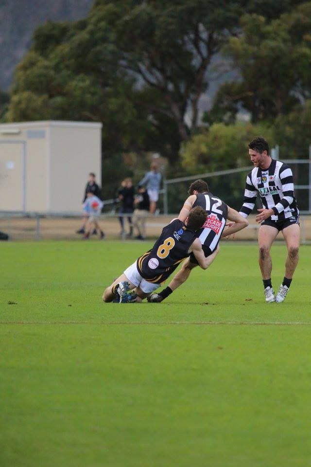 Round 14 – Young Tigers well beaten by classy Pies